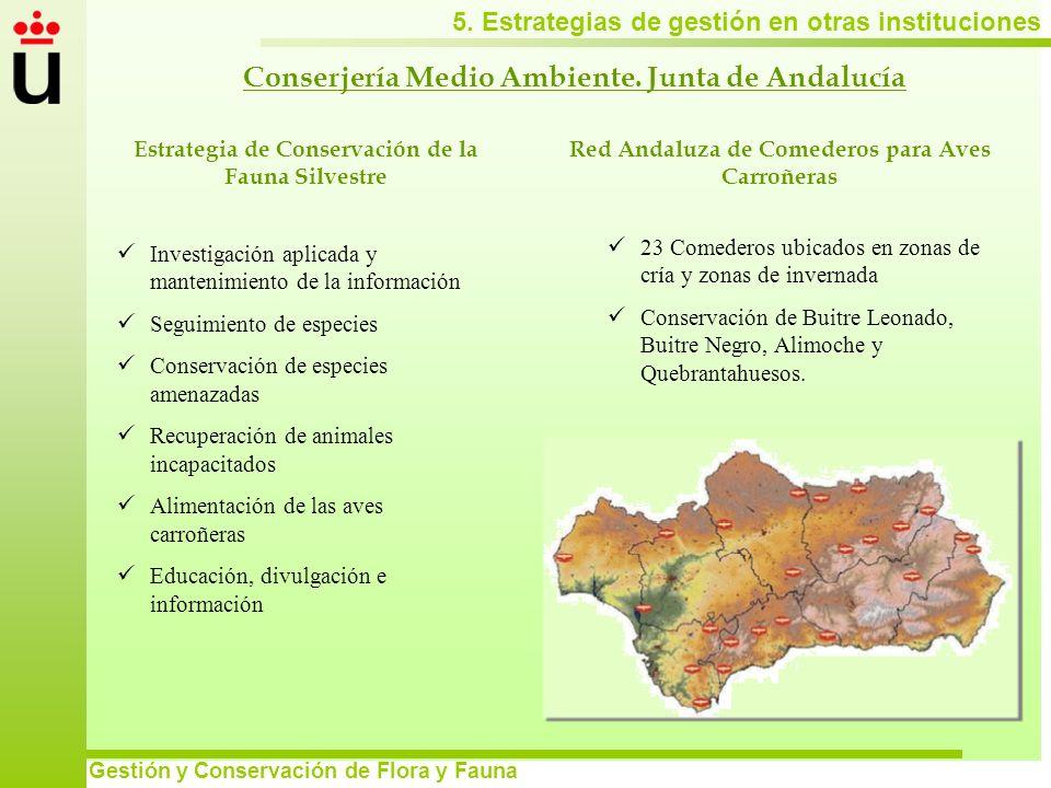 5. Estrategias de gestión en otras instituciones Gestión y Conservación de Flora y Fauna Conserjería Medio Ambiente. Junta de Andalucía Red Andaluza d