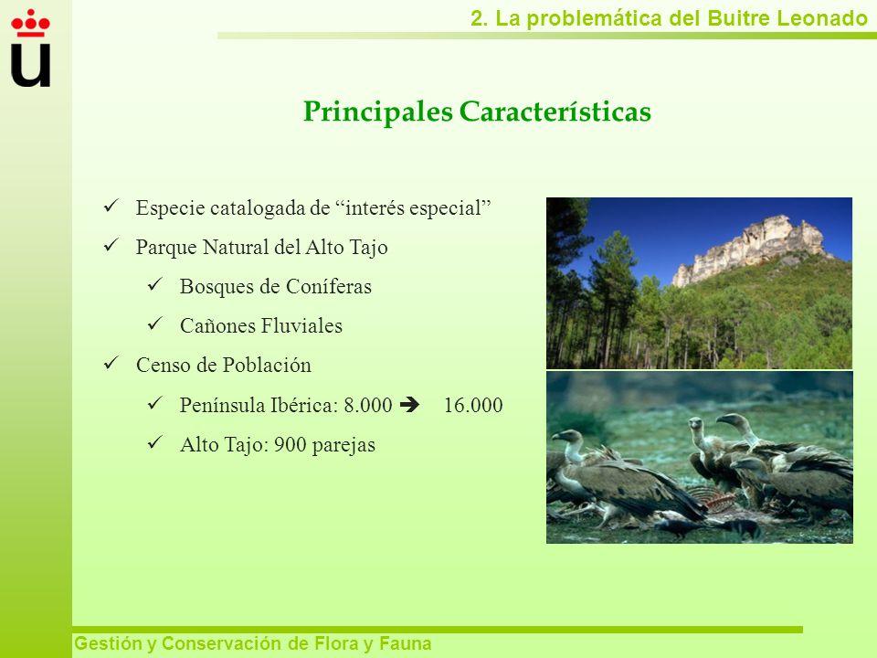 2. La problemática del Buitre Leonado Gestión y Conservación de Flora y Fauna Principales Características Especie catalogada de interés especial Parqu