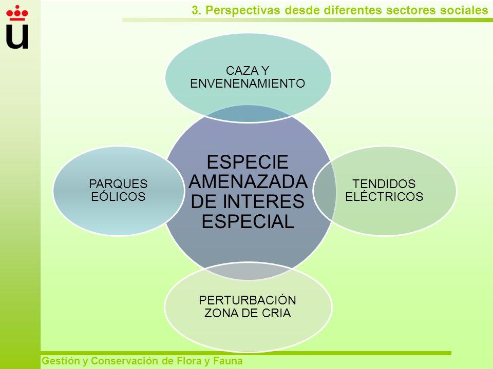 3. Perspectivas desde diferentes sectores sociales Gestión y Conservación de Flora y Fauna ESPECIE AMENAZADA DE INTERES ESPECIAL CAZA Y ENVENENAMIENTO