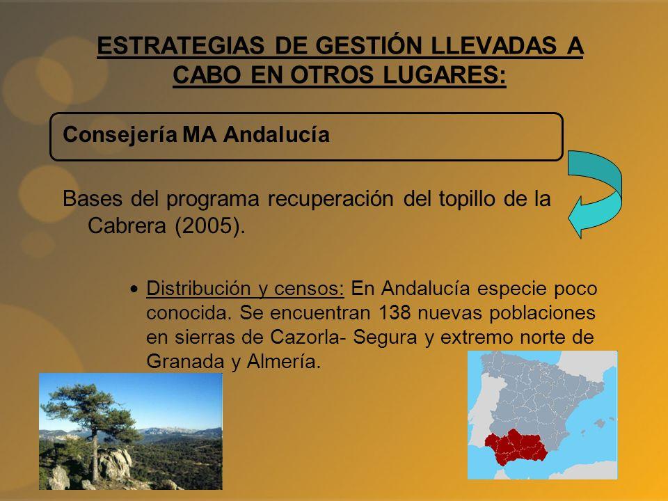 ESTRATEGIAS DE GESTIÓN LLEVADAS A CABO EN OTROS LUGARES: Consejería MA Andalucía Bases del programa recuperación del topillo de la Cabrera (2005). Dis