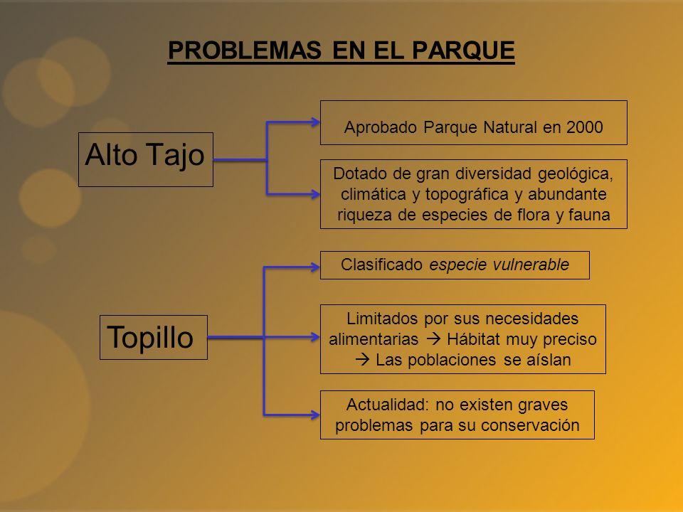 PROBLEMAS EN EL PARQUE Alto Tajo Aprobado Parque Natural en 2000 Dotado de gran diversidad geológica, climática y topográfica y abundante riqueza de e
