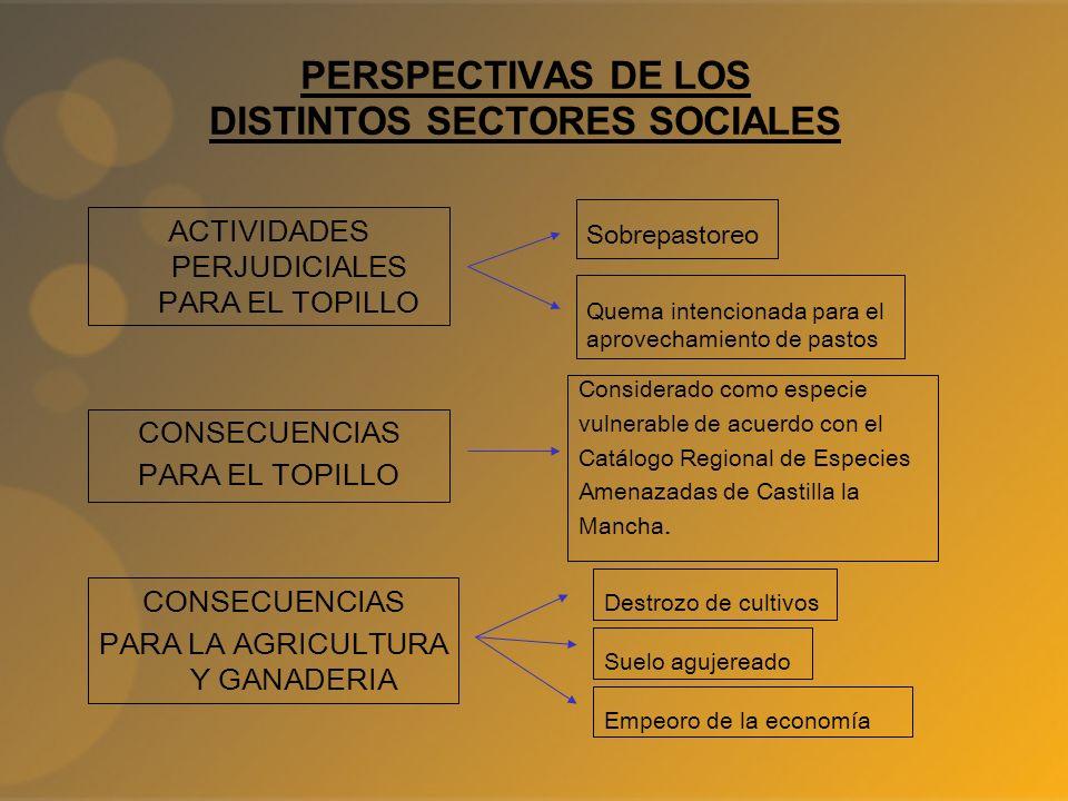 PERSPECTIVAS DE LOS DISTINTOS SECTORES SOCIALES Quema intencionada para el aprovechamiento de pastos ACTIVIDADES PERJUDICIALES PARA EL TOPILLO Sobrepa