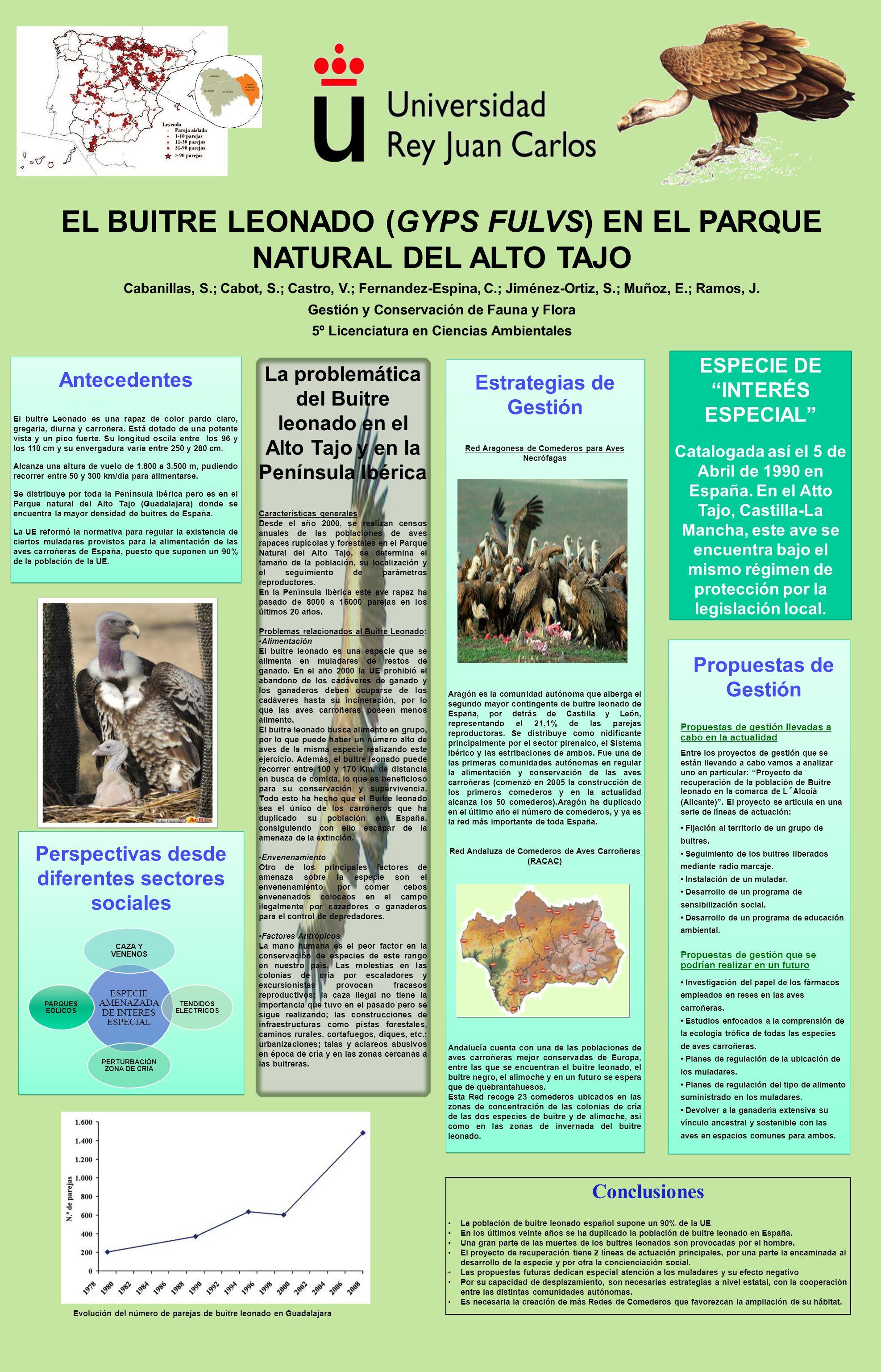 EL BUITRE LEONADO (GYPS FULVS) EN EL PARQUE NATURAL DEL ALTO TAJO Cabanillas, S.; Cabot, S.; Castro, V.; Fernandez-Espina, C.; Jiménez-Ortiz, S.; Muño