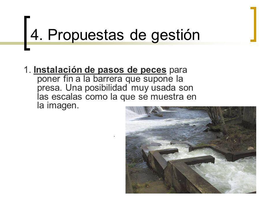 Estas permiten que especies como el salmón o la trucha puedan remontar el río para desovar.
