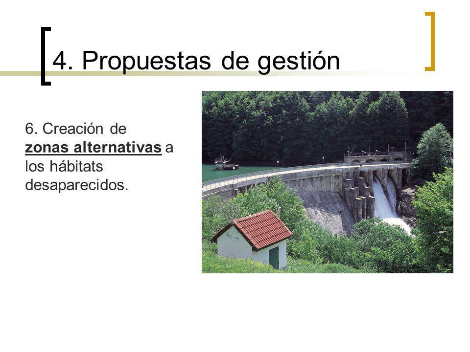 6. Creación de zonas alternativas a los hábitats desaparecidos. 4. Propuestas de gestión