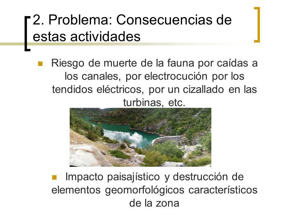 Modificación hábitat original Pudiendo provocar la llegada de alguna especie que perjudique a la fauna característica del Parque Asentamiento de garzas y cormoranes que atacan a las poblaciones de peces.