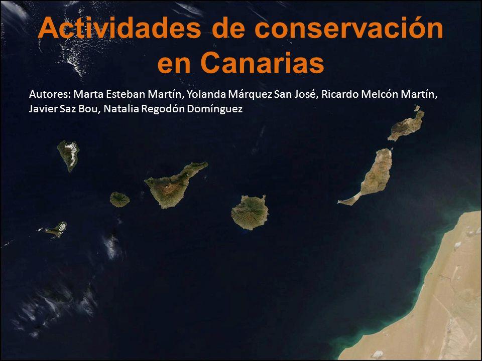 Actividades de conservación en Canarias Autores: Marta Esteban Martín, Yolanda Márquez San José, Ricardo Melcón Martín, Javier Saz Bou, Natalia Regodó