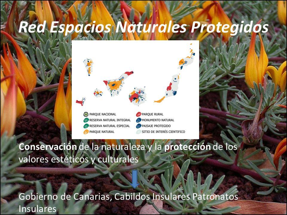 Red Espacios Naturales Protegidos Conservación de la naturaleza y la protección de los valores estéticos y culturales Gobierno de Canarias, Cabildos I