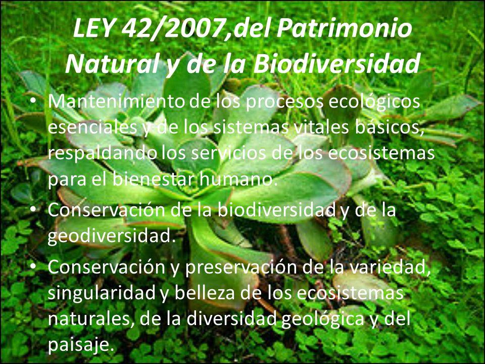 LEY 42/2007,del Patrimonio Natural y de la Biodiversidad Mantenimiento de los procesos ecológicos esenciales y de los sistemas vitales básicos, respal