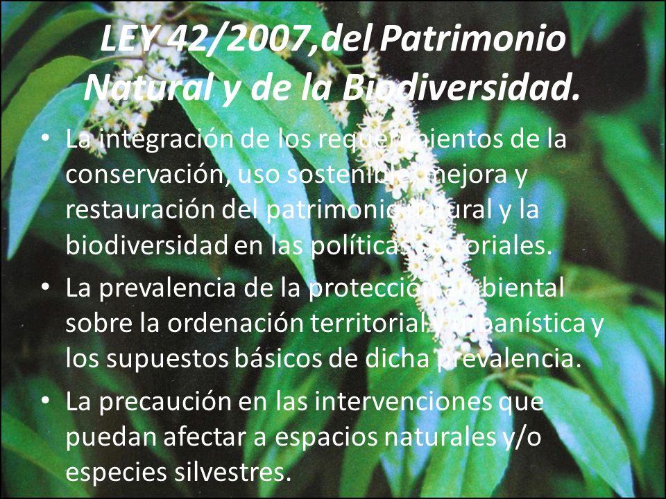La integración de los requerimientos de la conservación, uso sostenible, mejora y restauración del patrimonio natural y la biodiversidad en las políti