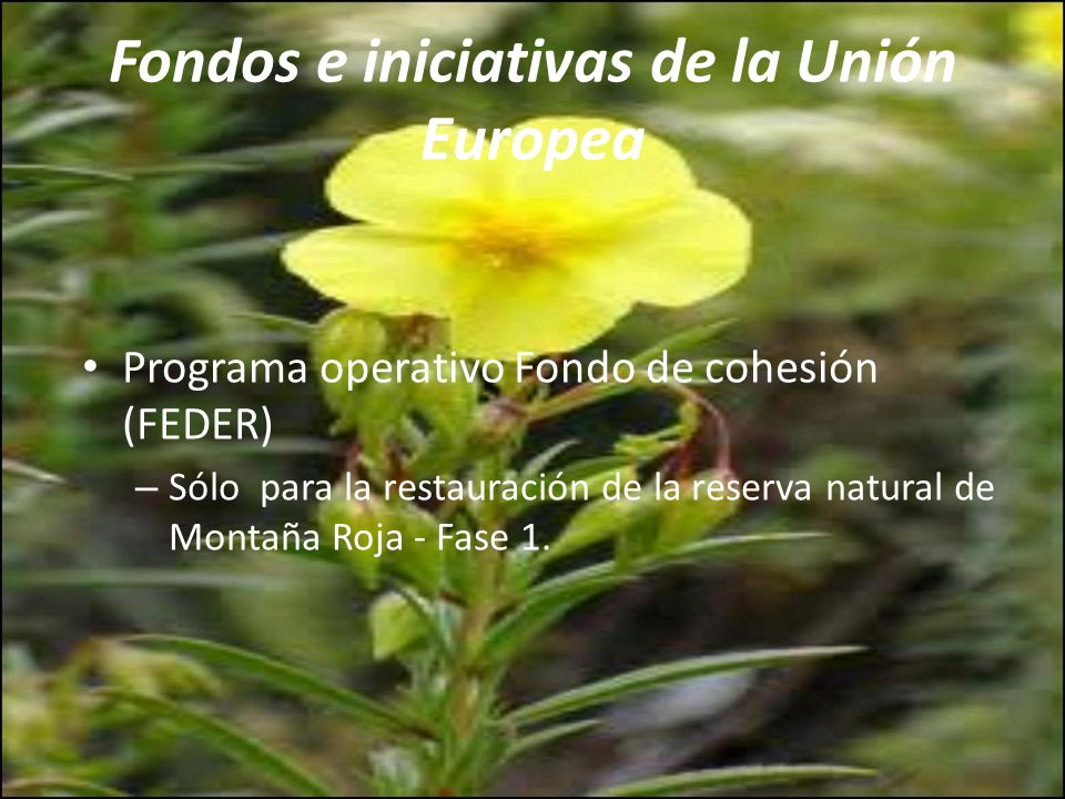 Fondo de compensación (Gobierno de España) Protección y mejora del medio ambiente: 4.331 Financiación privada Datos muy diversos y pueden provenir de cualquier tipo de entidad privada.