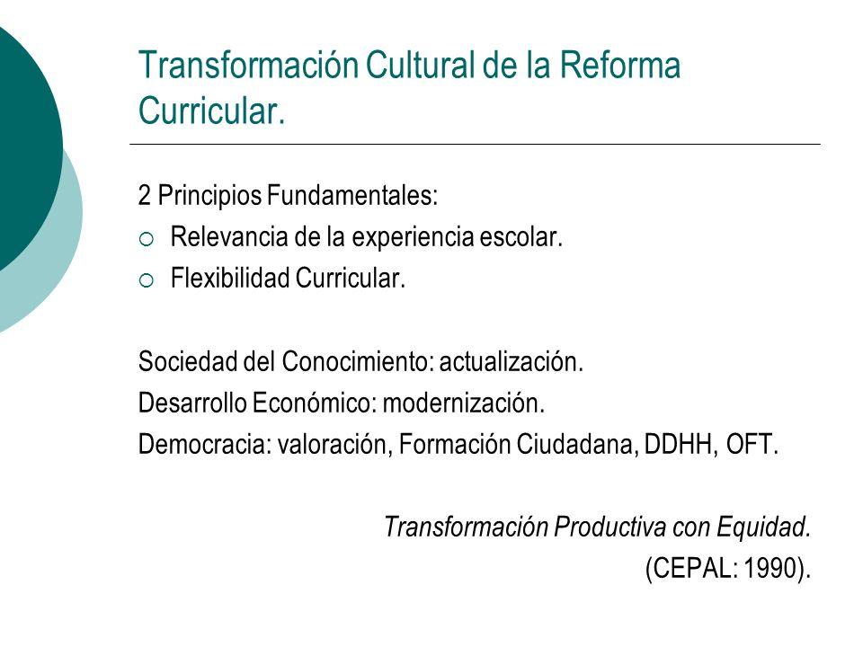 Transformación Cultural de la Reforma Curricular. 2 Principios Fundamentales: Relevancia de la experiencia escolar. Flexibilidad Curricular. Sociedad