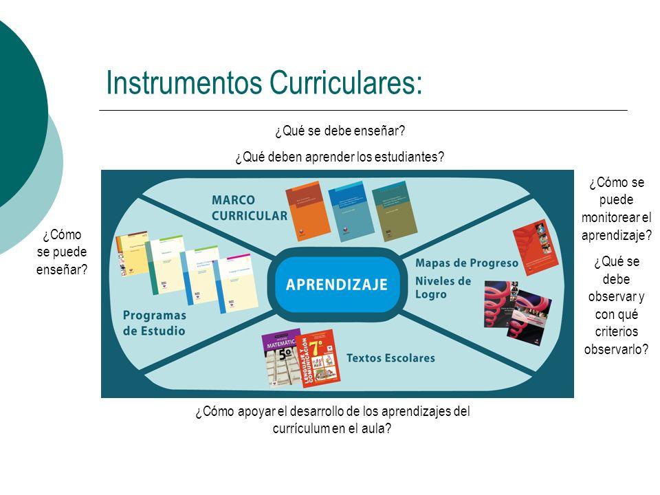 Instrumentos Curriculares: ¿Cómo apoyar el desarrollo de los aprendizajes del currículum en el aula? ¿Qué se debe enseñar? ¿Qué deben aprender los est