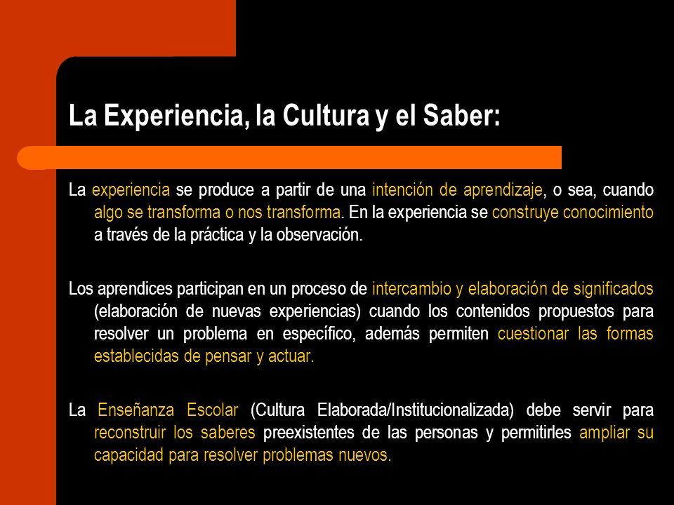La Experiencia, la Cultura y el Saber: El objetivo de la Enseñanza Escolar no es asegurar la adquisición de un contenido, sino que el contenido a enseñar es un recurso para plantear problemas que impulsen la reconstrucción de las ideas, las percepciones y las actitudes de los estudiantes.