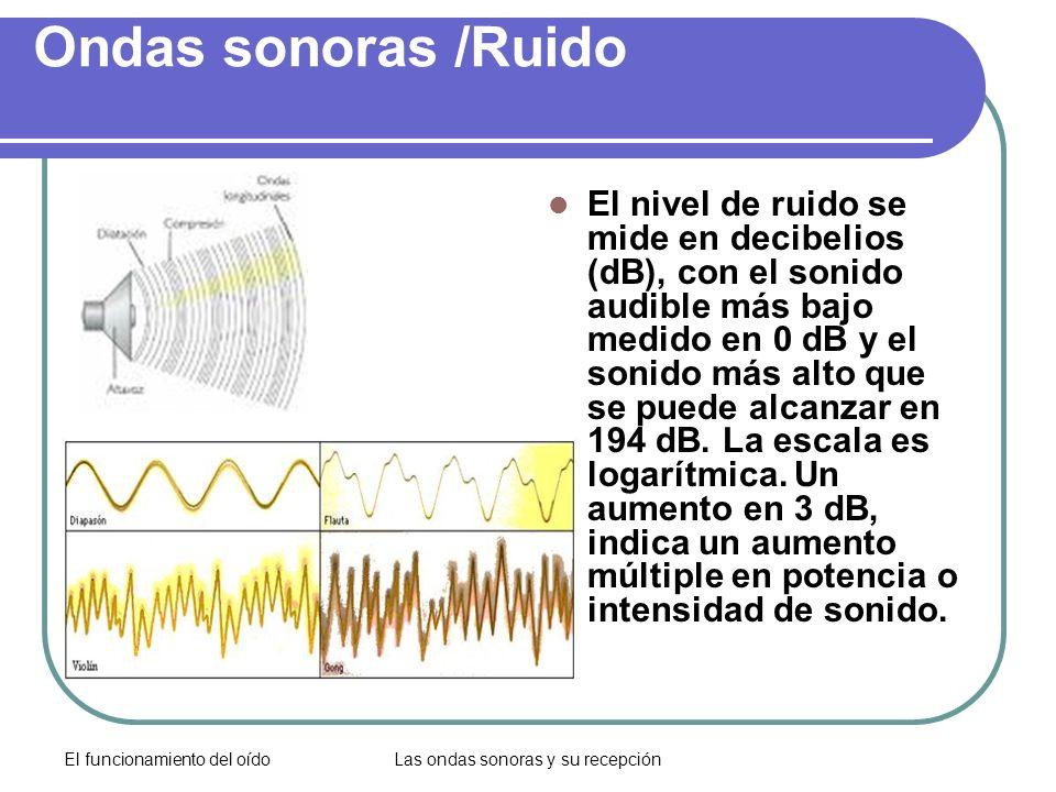 El funcionamiento del oídoLas ondas sonoras y su recepción Ondas sonoras /Ruido El nivel de ruido se mide en decibelios (dB), con el sonido audible má