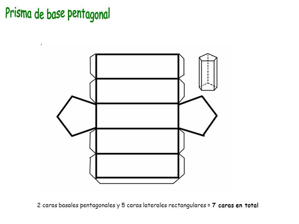 2 caras basales pentagonales y 5 caras laterales rectangulares = 7 caras en total