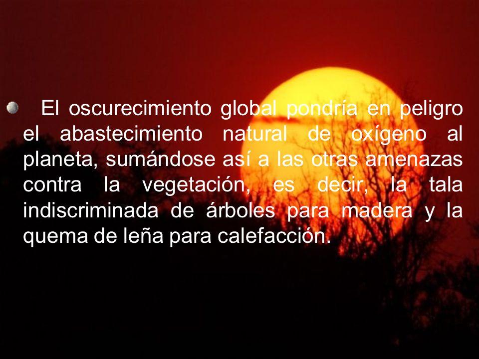 El oscurecimiento global pondría en peligro el abastecimiento natural de oxígeno al planeta, sumándose así a las otras amenazas contra la vegetación,