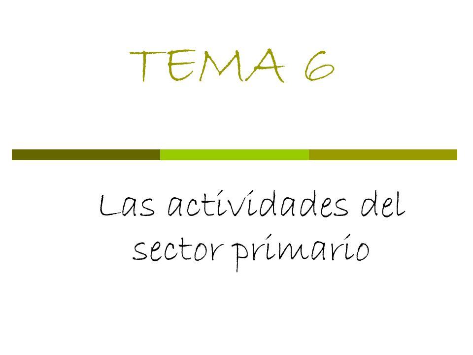 TEMA 6 Las actividades del sector primario