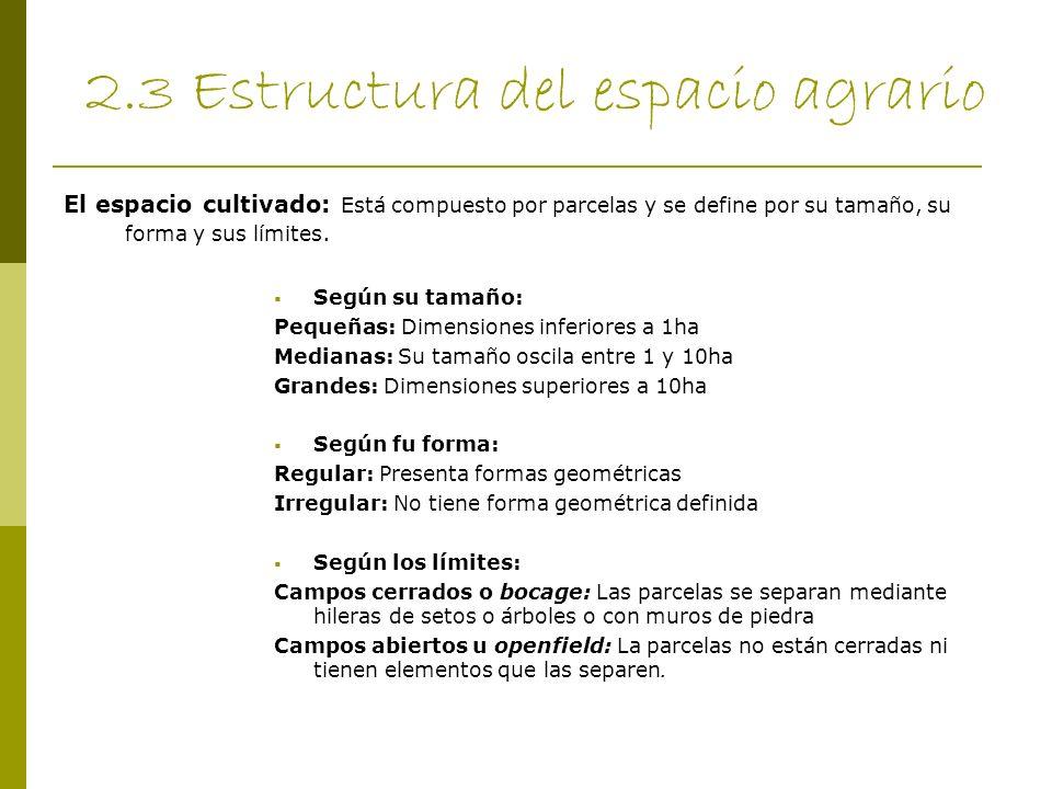 2.3 Estructura del espacio agrario El espacio cultivado: Está compuesto por parcelas y se define por su tamaño, su forma y sus límites. Según su tamañ