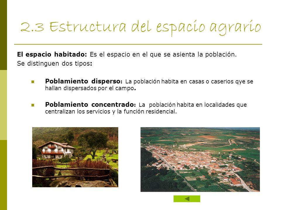 2.3 Estructura del espacio agrario El espacio habitado: Es el espacio en el que se asienta la población. Se distinguen dos tipos: Poblamiento disperso