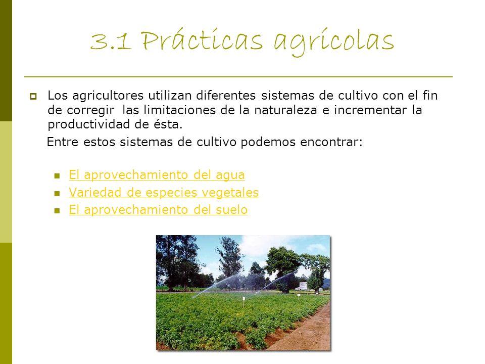 3.1 Prácticas agrícolas Los agricultores utilizan diferentes sistemas de cultivo con el fin de corregir las limitaciones de la naturaleza e incrementa