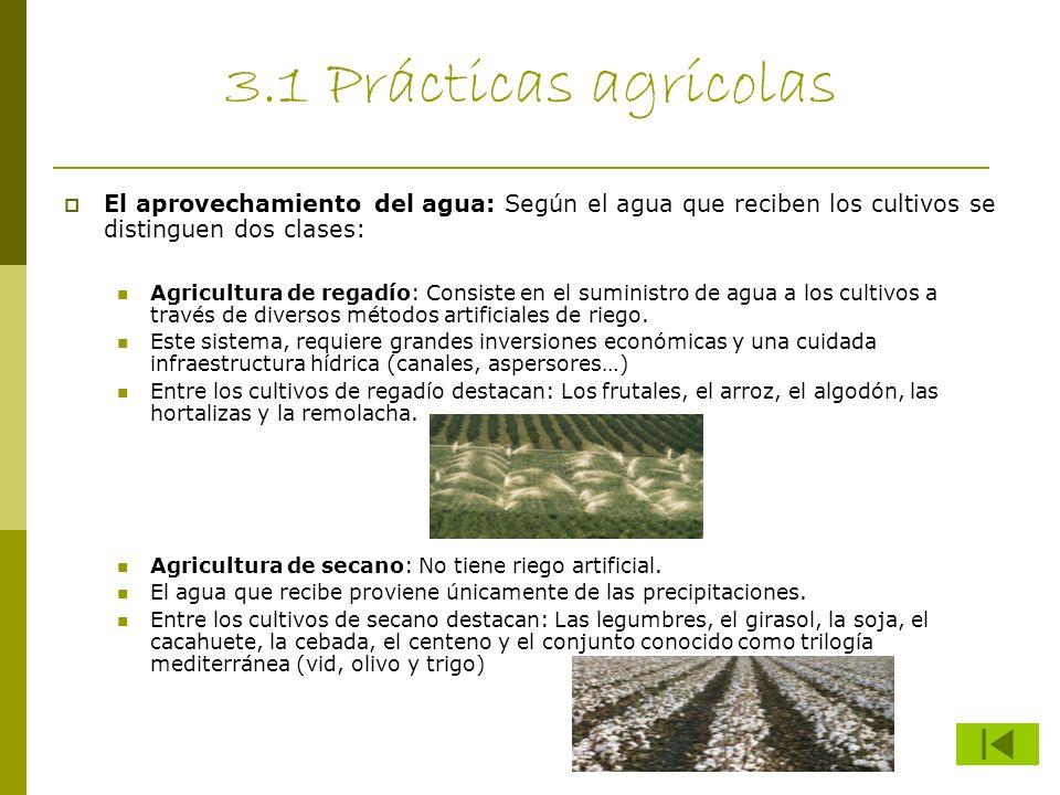 3.1 Prácticas agrícolas El aprovechamiento del agua: Según el agua que reciben los cultivos se distinguen dos clases: Agricultura de regadío: Consiste