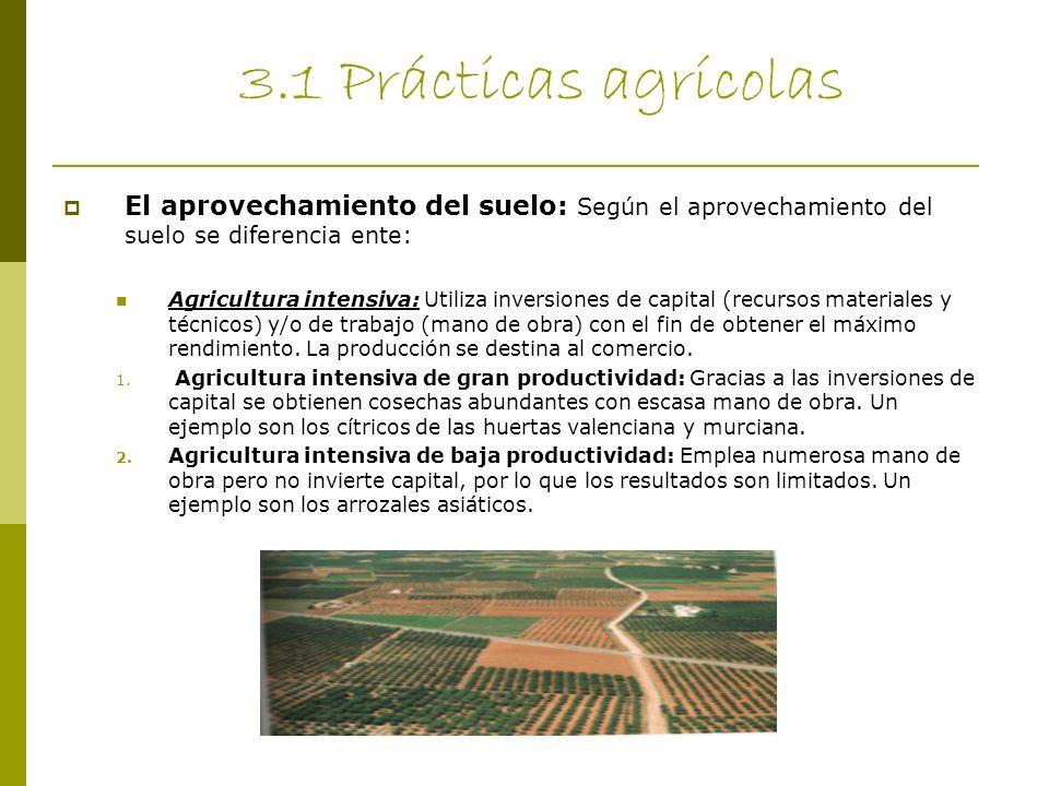 3.1 Prácticas agrícolas El aprovechamiento del suelo: Según el aprovechamiento del suelo se diferencia ente: Agricultura intensiva: Utiliza inversione