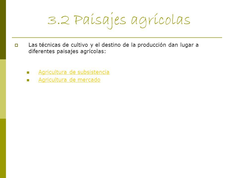 3.2 Paisajes agrícolas Las técnicas de cultivo y el destino de la producción dan lugar a diferentes paisajes agrícolas: Agricultura de subsistencia Ag