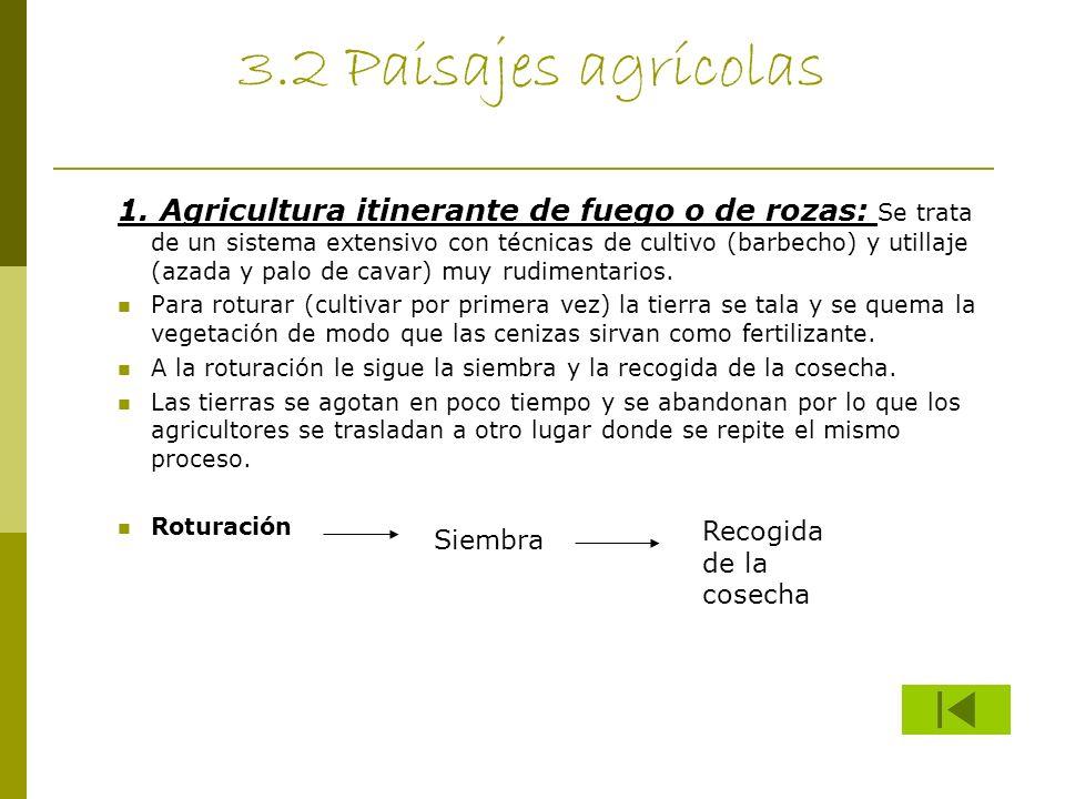 3.2 Paisajes agrícolas 1. Agricultura itinerante de fuego o de rozas: Se trata de un sistema extensivo con técnicas de cultivo (barbecho) y utillaje (