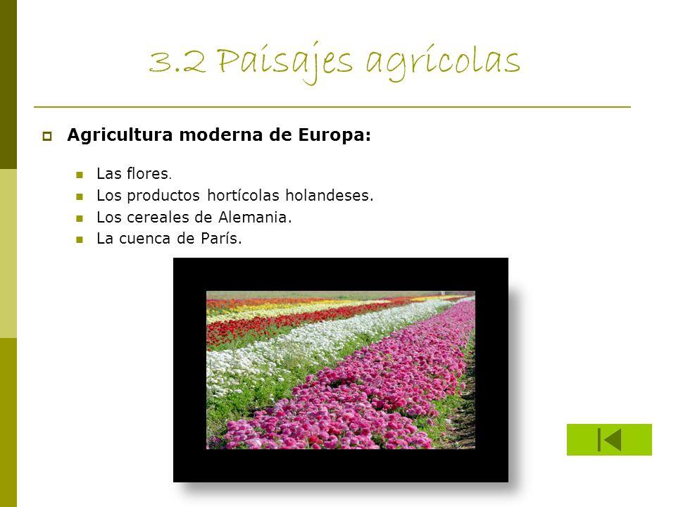 3.2 Paisajes agrícolas Agricultura moderna de Europa: Las flores. Los productos hortícolas holandeses. Los cereales de Alemania. La cuenca de París.