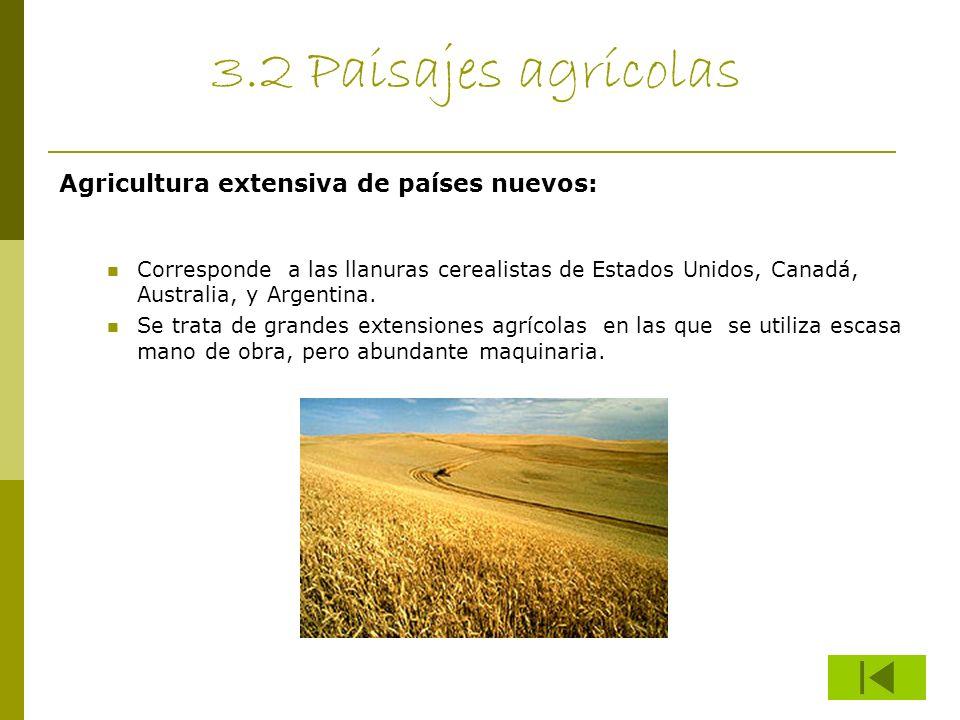 3.2 Paisajes agrícolas Agricultura extensiva de países nuevos: Corresponde a las llanuras cerealistas de Estados Unidos, Canadá, Australia, y Argentin