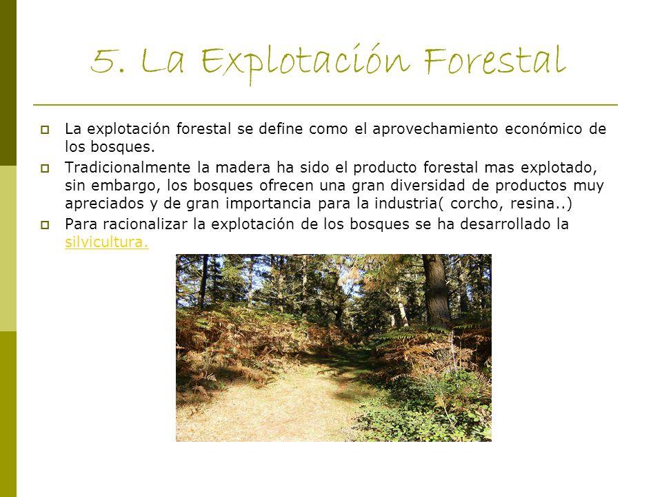 5. La Explotación Forestal La explotación forestal se define como el aprovechamiento económico de los bosques. Tradicionalmente la madera ha sido el p