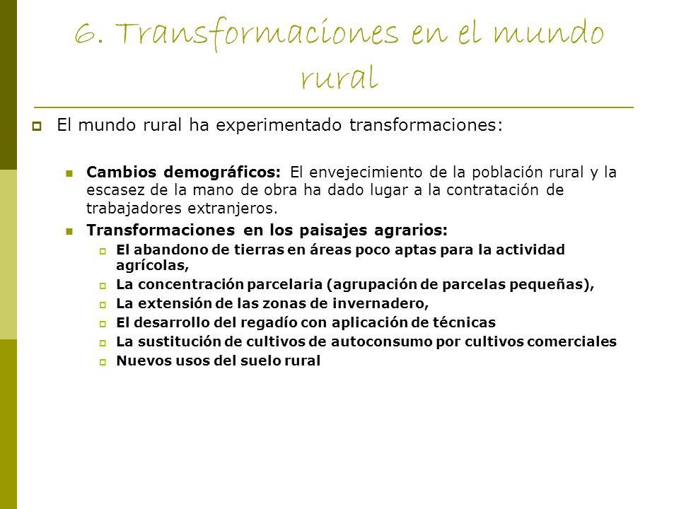 6. Transformaciones en el mundo rural El mundo rural ha experimentado transformaciones: Cambios demográficos: El envejecimiento de la población rural