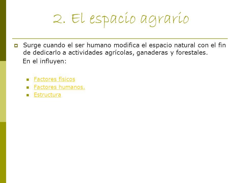 2.1 Factores físicos Los principales factores físicos son: Clima: Temperatura, precipitaciones y agentes atmosféricos.