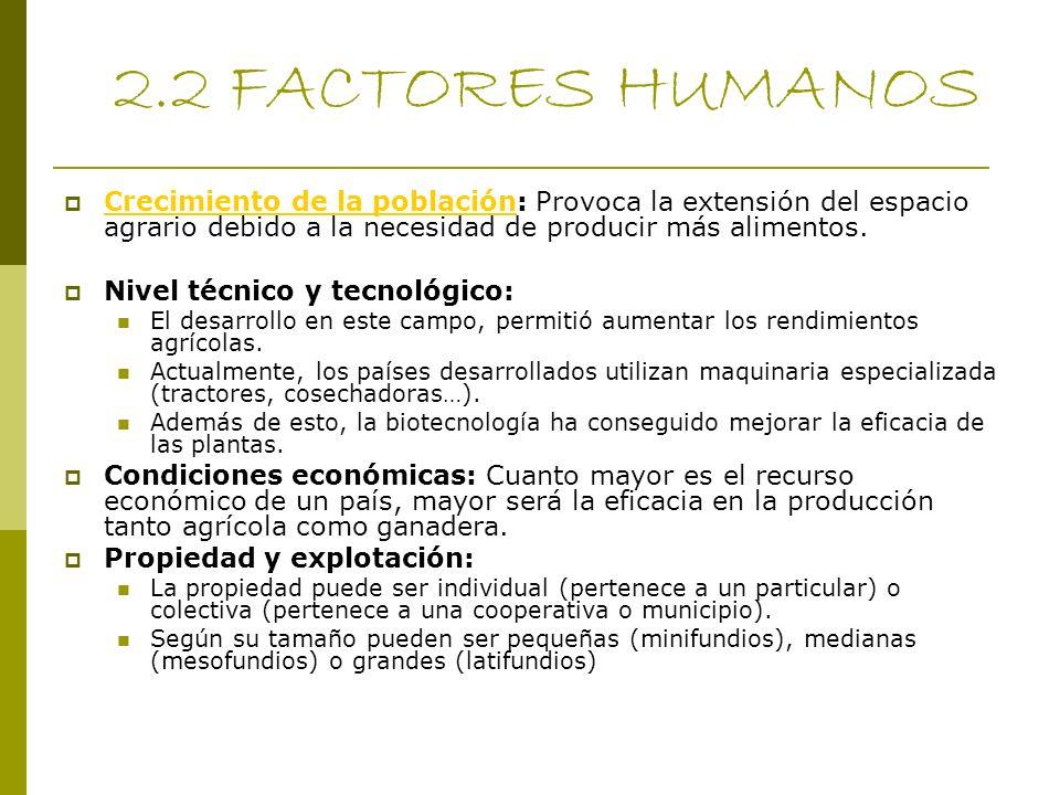 2.2 FACTORES HUMANOS Crecimiento de la población: Provoca la extensión del espacio agrario debido a la necesidad de producir más alimentos. Crecimient