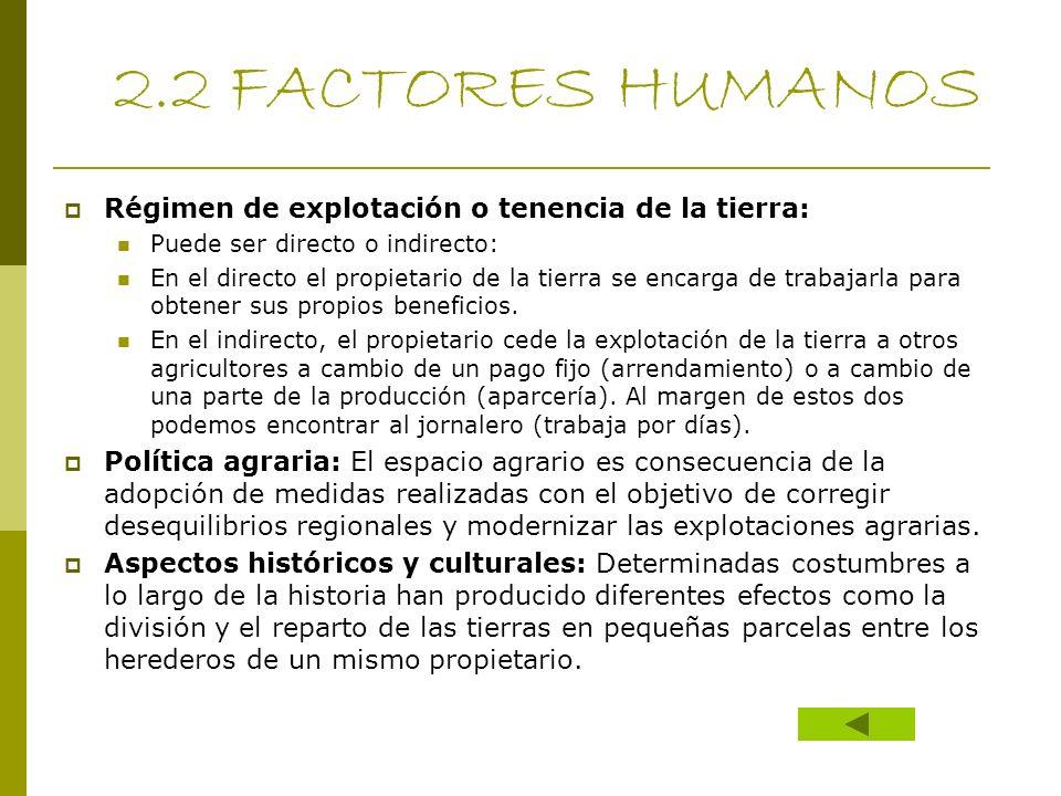 2.2 FACTORES HUMANOS Régimen de explotación o tenencia de la tierra: Puede ser directo o indirecto: En el directo el propietario de la tierra se encar