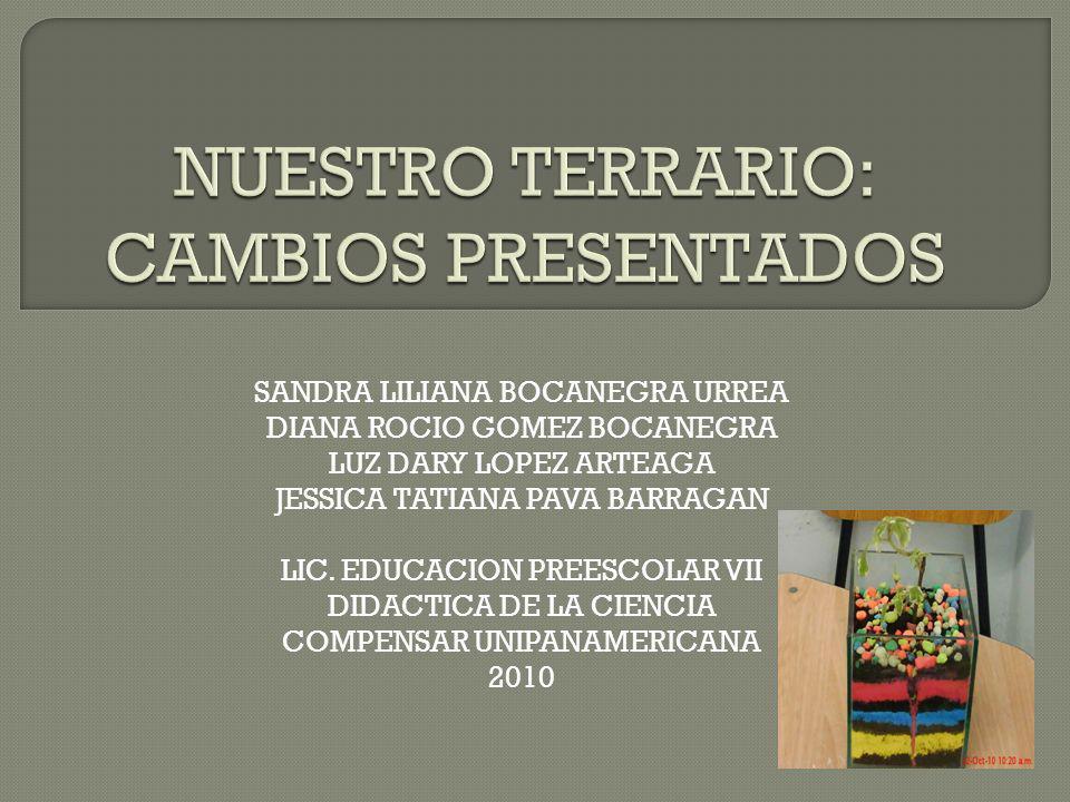 SANDRA LILIANA BOCANEGRA URREA DIANA ROCIO GOMEZ BOCANEGRA LUZ DARY LOPEZ ARTEAGA JESSICA TATIANA PAVA BARRAGAN LIC. EDUCACION PREESCOLAR VII DIDACTIC