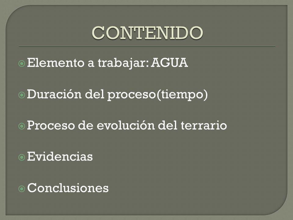 Elemento a trabajar: AGUA Duración del proceso(tiempo) Proceso de evolución del terrario Evidencias Conclusiones