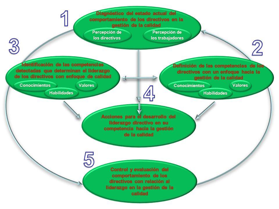 Percepción de los directivos Percepción de los trabajadores ConocimientosConocimientos HabilidadesHabilidades ValoresValores ConocimientosConocimiento