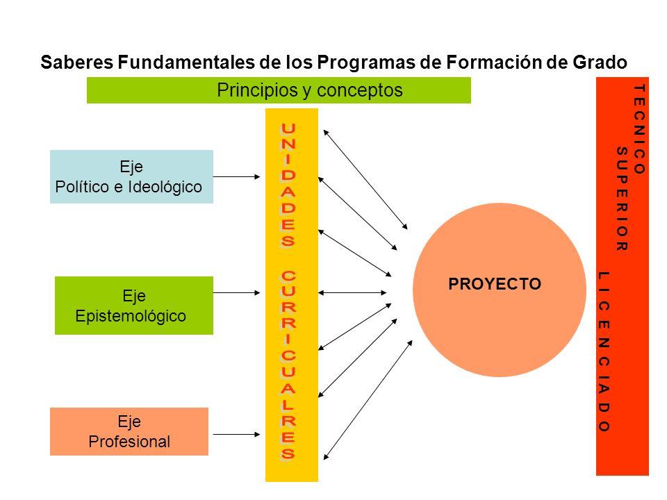 Saberes Fundamentales de los Programas de Formación de Grado Eje Epistemológico Eje Político e Ideológico Eje Profesional Principios y conceptos PROYE