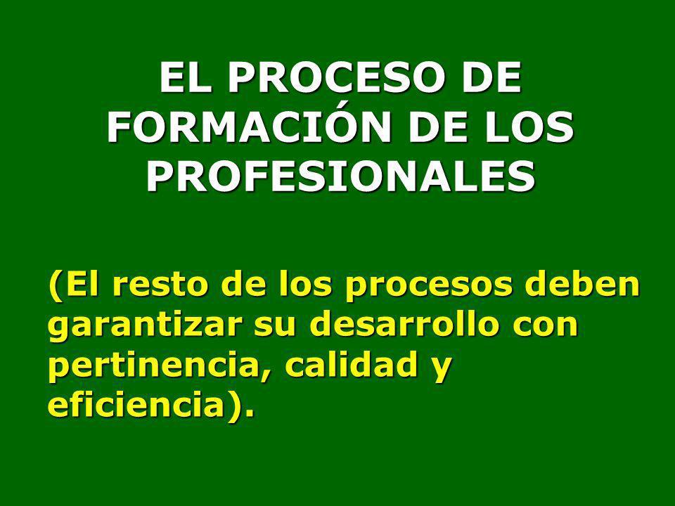 EL PROCESO DE FORMACIÓN DE LOS PROFESIONALES (El resto de los procesos deben garantizar su desarrollo con pertinencia, calidad y eficiencia).