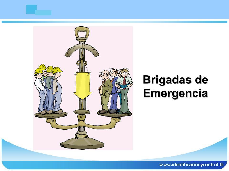 Coordinar los apoyos logísticos.Prevenir y proteger las instalaciones.