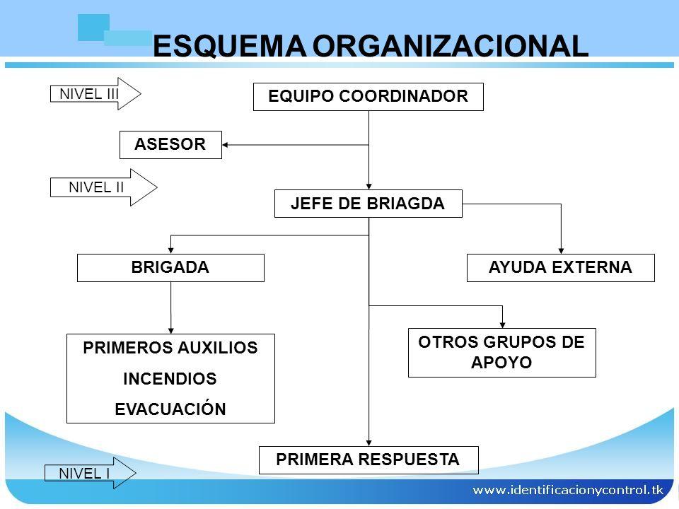 ESQUEMA ORGANIZACIONAL EQUIPO COORDINADOR ASESOR JEFE DE BRIAGDA BRIGADAAYUDA EXTERNA PRIMEROS AUXILIOS INCENDIOS EVACUACIÓN OTROS GRUPOS DE APOYO PRI