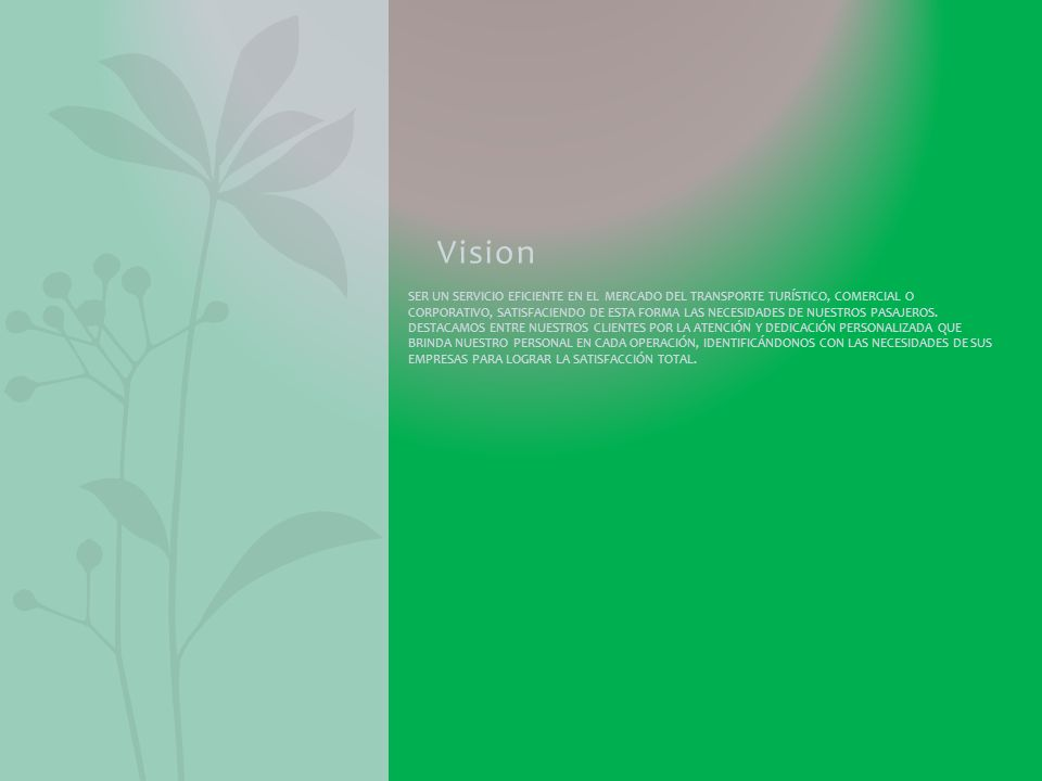 Vision SER UN SERVICIO EFICIENTE EN EL MERCADO DEL TRANSPORTE TURÍSTICO, COMERCIAL O CORPORATIVO, SATISFACIENDO DE ESTA FORMA LAS NECESIDADES DE NUESTROS PASAJEROS.