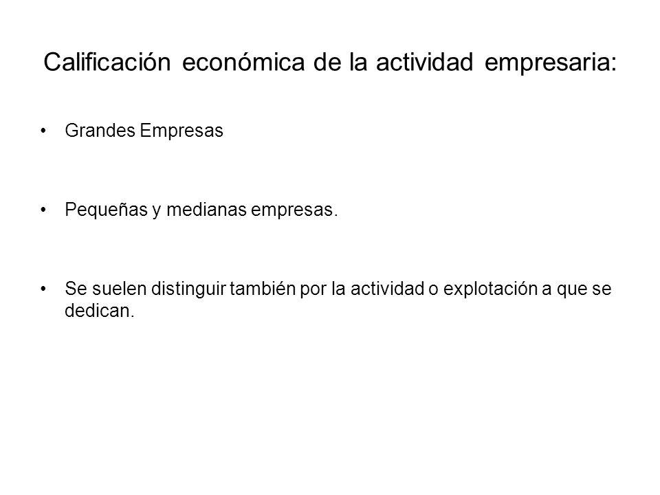 Calificación económica de la actividad empresaria: Grandes Empresas Pequeñas y medianas empresas. Se suelen distinguir también por la actividad o expl