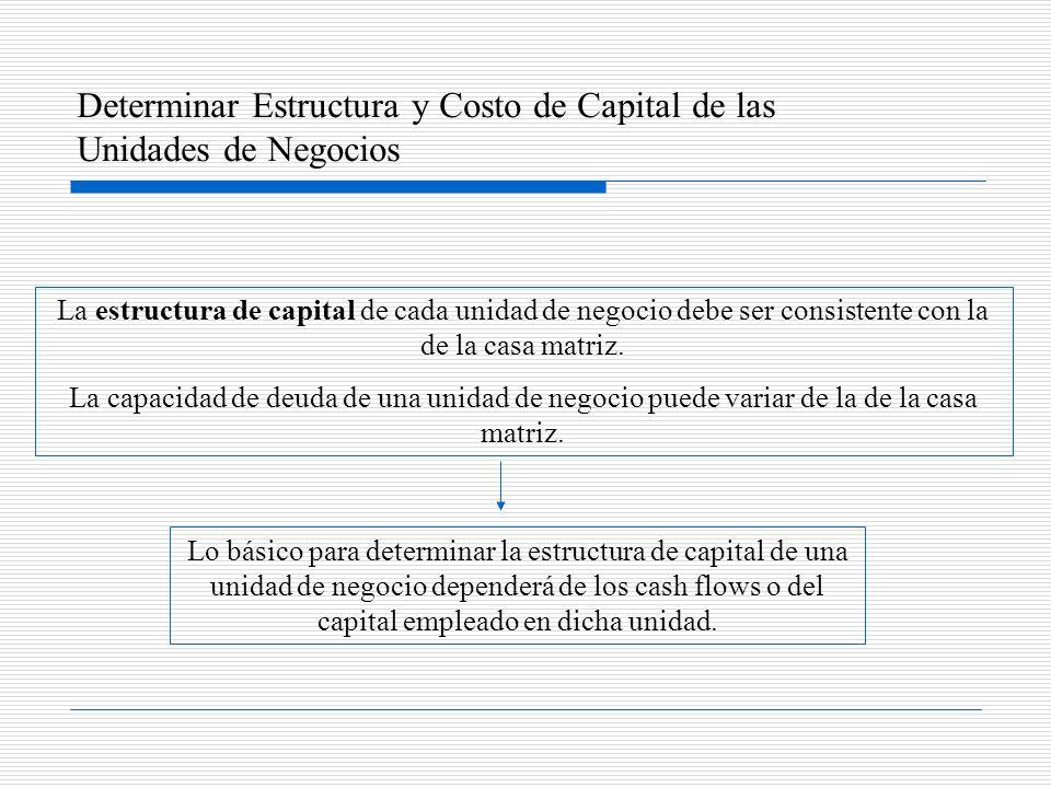 Determinar Estructura y Costo de Capital de las Unidades de Negocios La estructura de capital de cada unidad de negocio debe ser consistente con la de