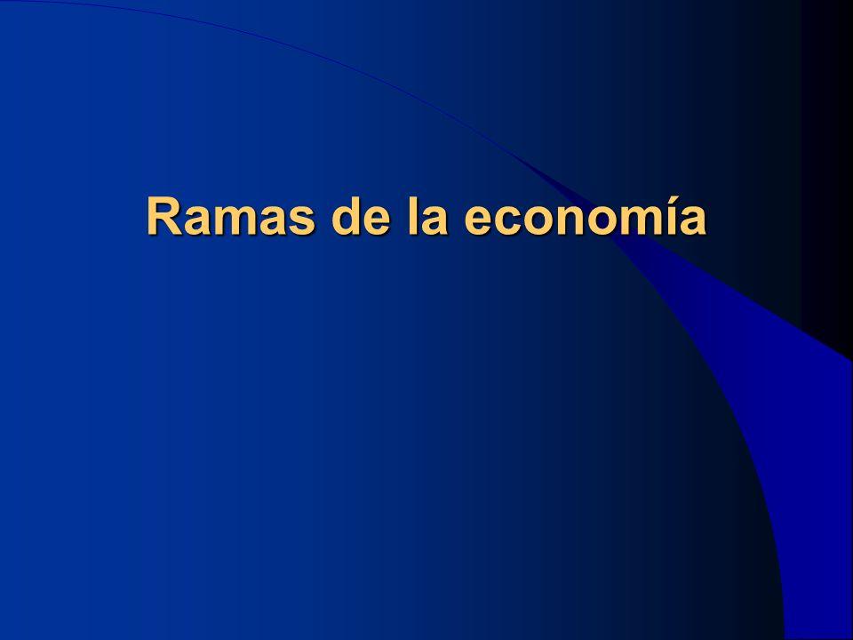 La microeconomía Trata del estudio de cómo los hogares y las empresas toman sus decisiones entre sí e interactúan en los mercados La macroeconomía Se ocupa del estudio del funcionamiento de la Economía en su conjunto