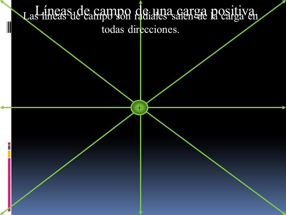 + Las líneas de campo son radiales salen de la carga en todas direcciones. Líneas de campo de una carga positiva.