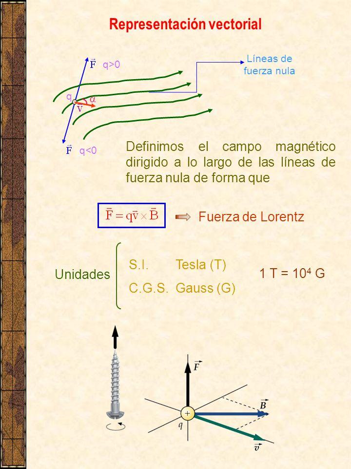 Representación vectorial q>0 q<0 Líneas de fuerza nula q Definimos el campo magnético dirigido a lo largo de las líneas de fuerza nula de forma que Fu