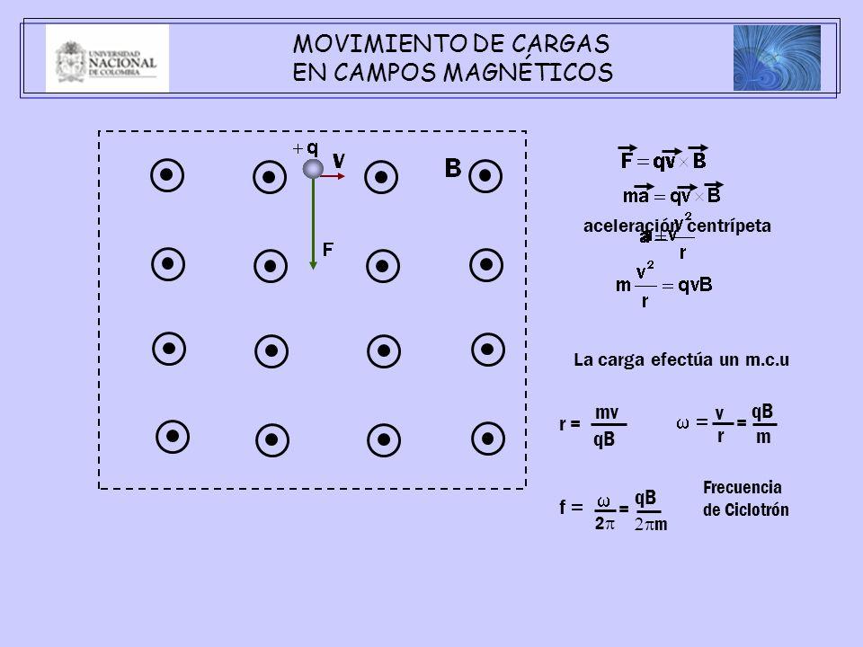 MOVIMIENTO DE CARGAS EN CAMPOS MAGNÉTICOS La carga efectúa un m.c.u r = mv qB v r qB m = f qB m = 2 Frecuencia de Ciclotrón aceleración centrípeta